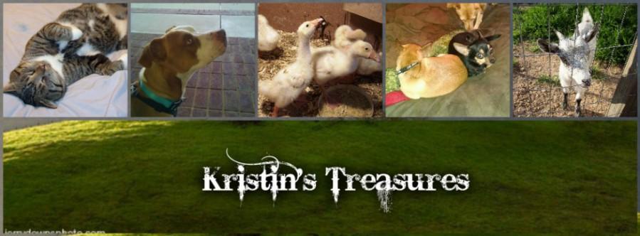 Kristin's Treasure